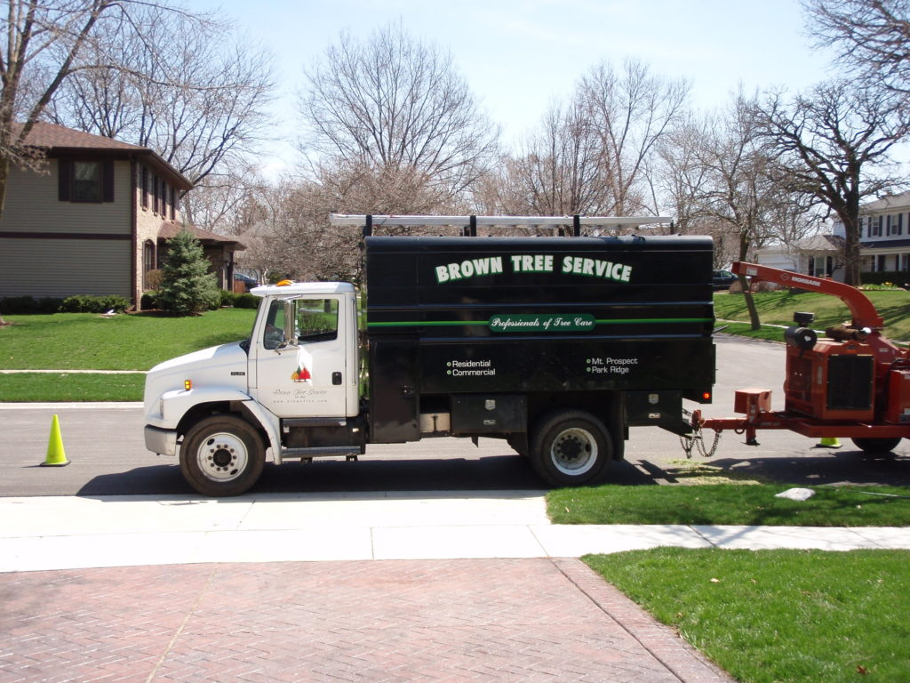 Tree Removal Buffalo Grove IL